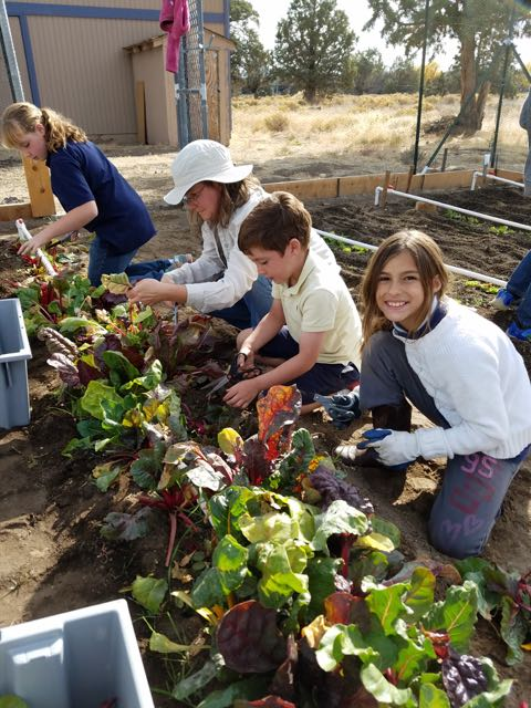 learning how to garden together at christian school