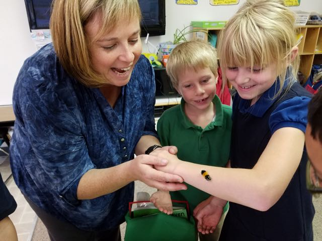 learning about bugs at christian school